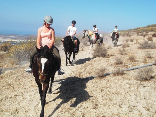horse-riding-adventures.jpg